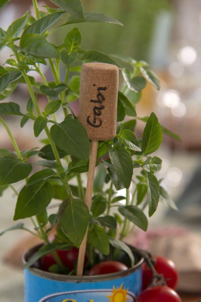 O marcador de lugar aparece dentro de uma lata cheia de ramos de manjericão.